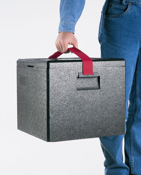 food_transport_box_with_carrying_strap_49708.jpg